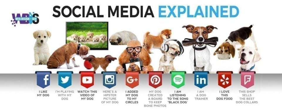 Web Design and SEO Use social media platforms to help your business in